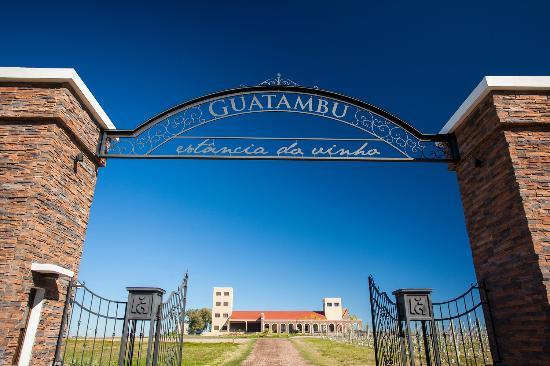 Estância Guatambu é referência no agronegócio gaúcho| Por Dilmar Isidoro