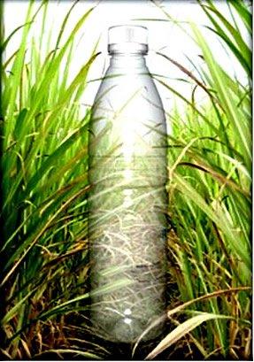 Plástico Verde: Agir para que o Amanhã seja Melhor | Por Yeda Crusius