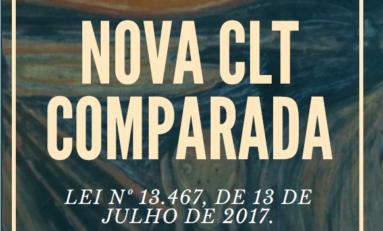 Estatuto do Trabalho: a nova CLT |  Senador Paulo Paim