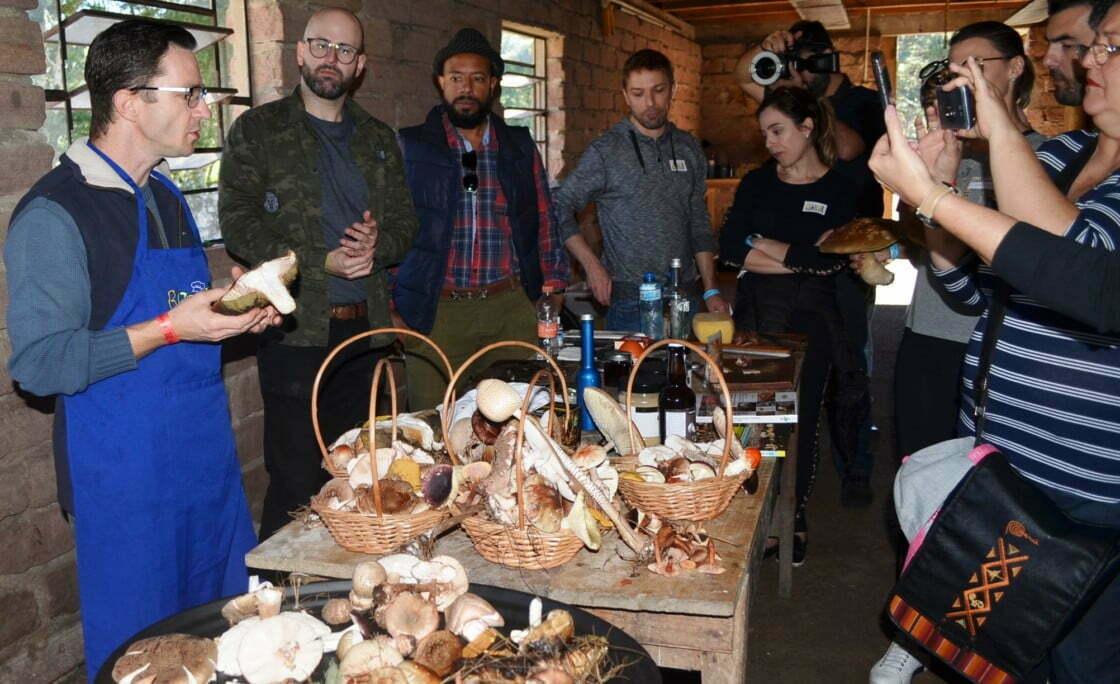 Grupo ensina turistas a 'caçar' cogumelos selvagens no interior do RS