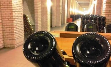 Cresce o mercado de vinhos e espumantes brasileiros