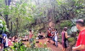 Fundação Iberê retoma atividades educativas na trilha ecológica