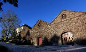 Vinícola Don Giovanni retorna atividades da pousada, restaurante e varejo