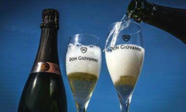 Terroir privilegiado e safra atingiram a sua melhor performance na Don Giovanni em 2020
