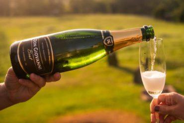 Vinícola Don Giovanni ganha ouro no concurso Brazil Wine Challenge
