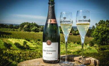 9ª edição da Grande Prova de Vinhos do Brasil reconhece rótulos da vinícola Don Giovanni