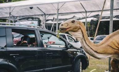 Jurassic Safari chega a Porto Alegre em maio