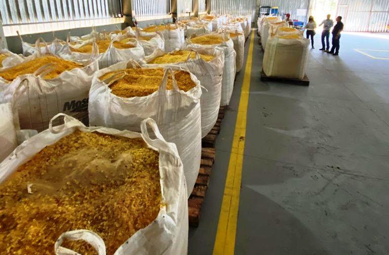 Empresa gaúcha produz ração para suínos em fazenda do Paraná